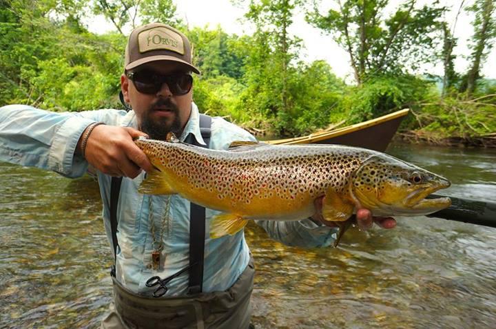 088718b3342 Fish Facts  Brown Trout (Salmo Trutta) - Orvis News