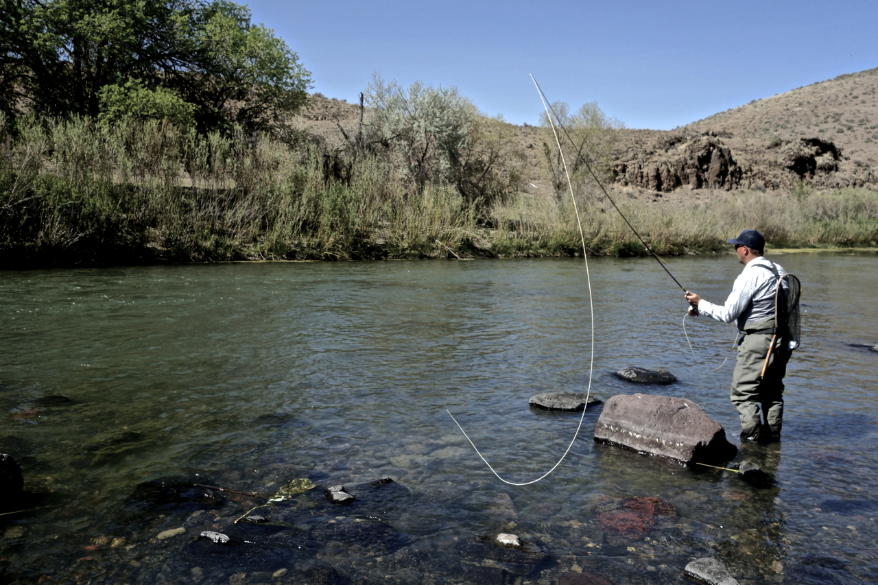An upstream journey dispatch 6 catch and release on the for Rising fly fishing