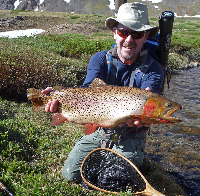Video colorado is a fly fisher 39 s playground orvis news for Colorado fish stocking