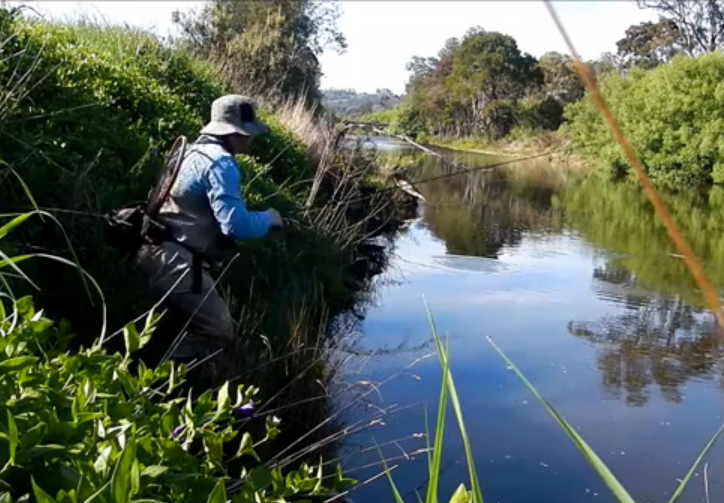 Video the art of stalking rising fish orvis news for Rising fly fishing