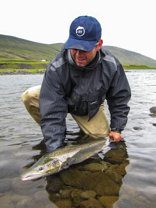 Classic photo essay amazing brown trout and salmon for Salmon fishing near me