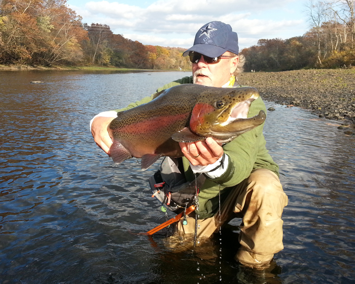 Photo Of The Day Possibly The Biggest Rainbow Trout Ever