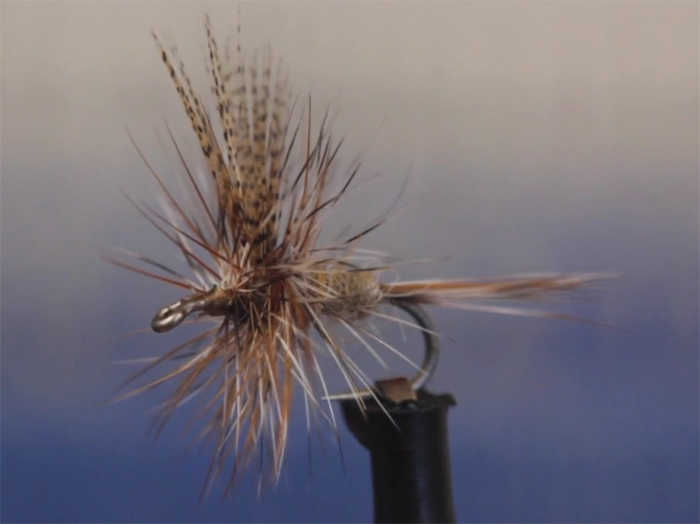 Buzzing In Ear >> Video: How to Tie the Dorato Hare's Ear Dry Fly - Orvis News