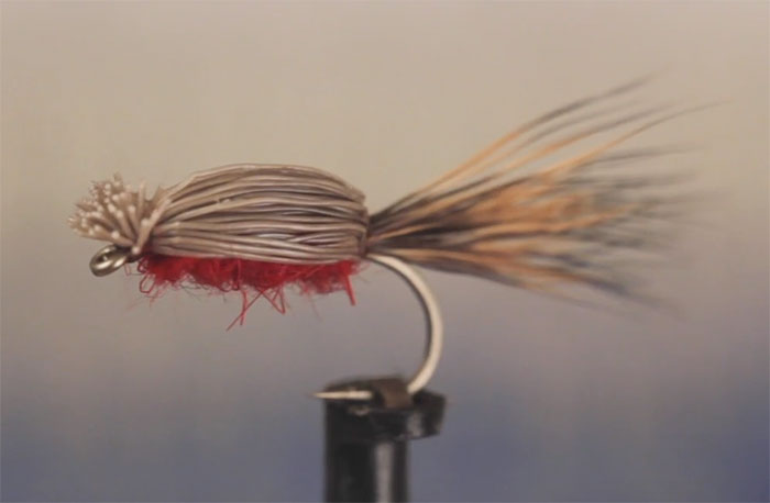 Video: How to Tie the Devil Bug - Orvis News