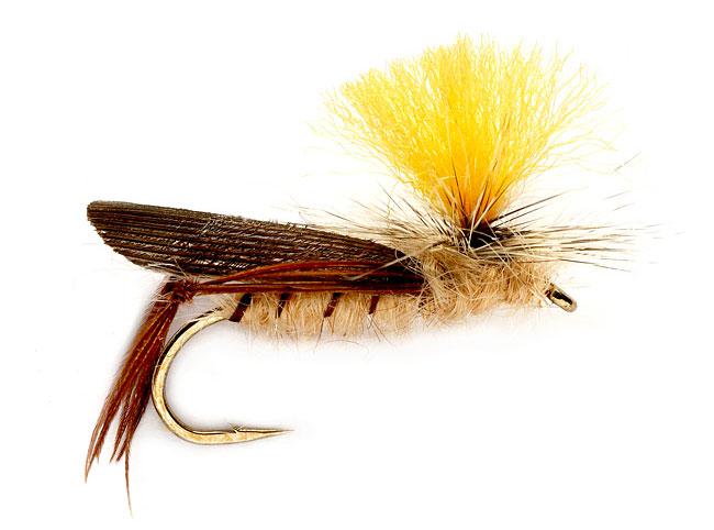 Tom s secret tips for fishing terrestrial flies orvis news for Orvis fly fishing 101