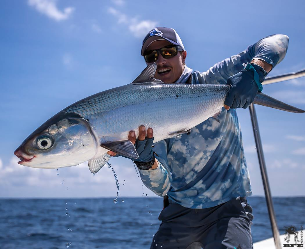 Photos an alphonse island adventure orvis news for Fly fishing news