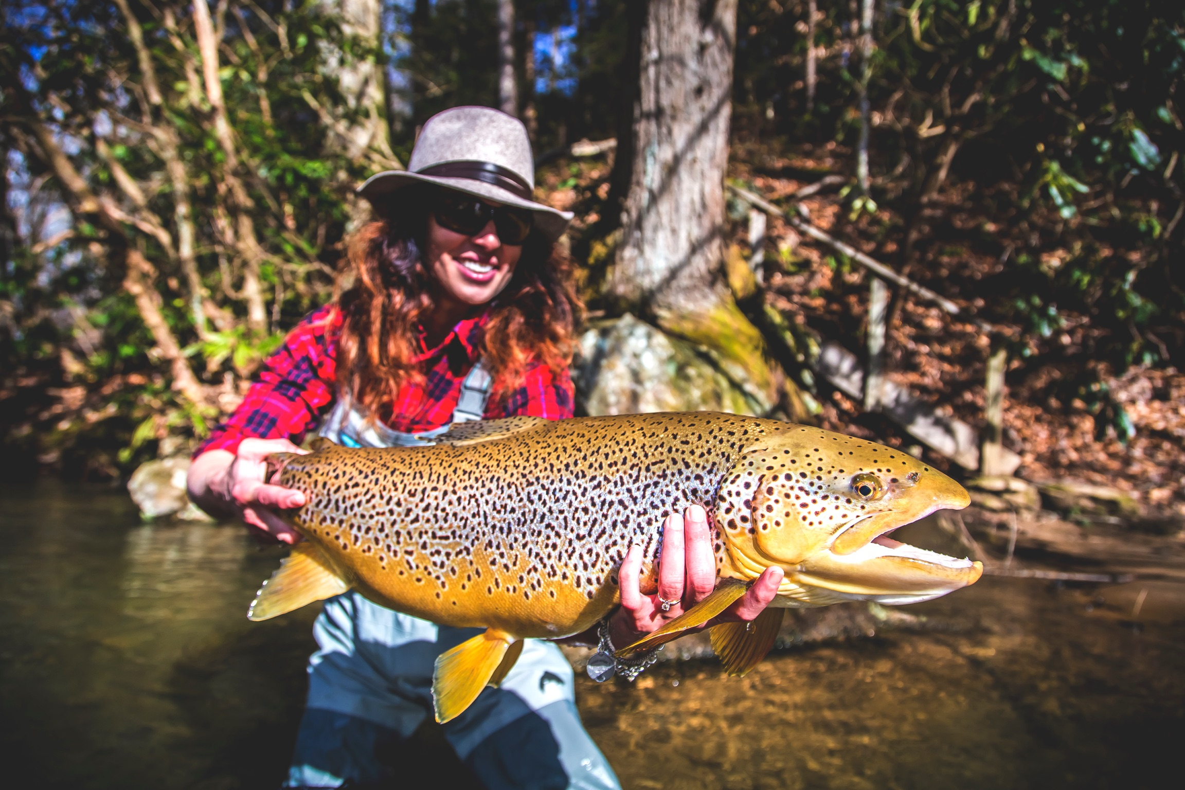 Photo of the day lesa 39 s midwinter monster orvis news for Brown trout fly fishing