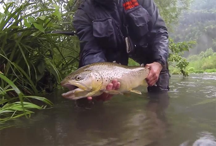 Italy fly fishing archives orvis news for Fly fishing spots near me