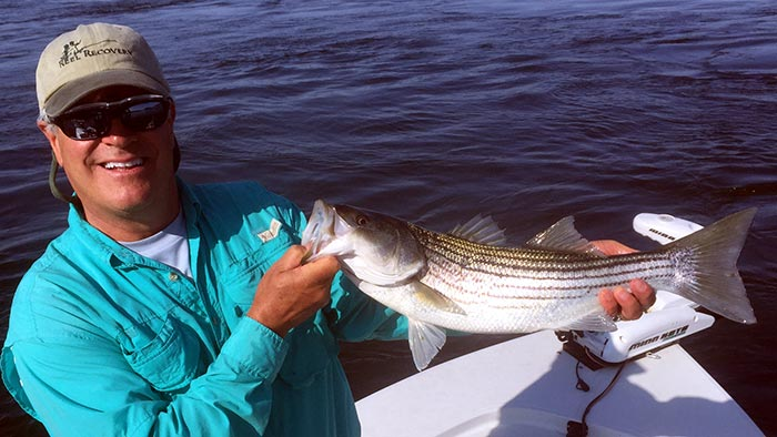 Photos: A Striper Morning on Maine's Kennebec River - Orvis News
