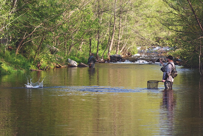 Photos celebrating the annual project healing waters 2 for Healing waters fly fishing