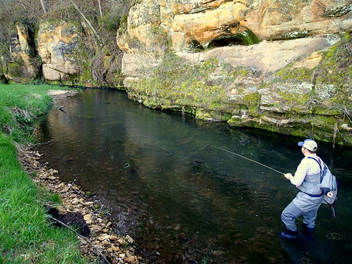 Story and photos learning to love the driftless area for Driftless fly fishing
