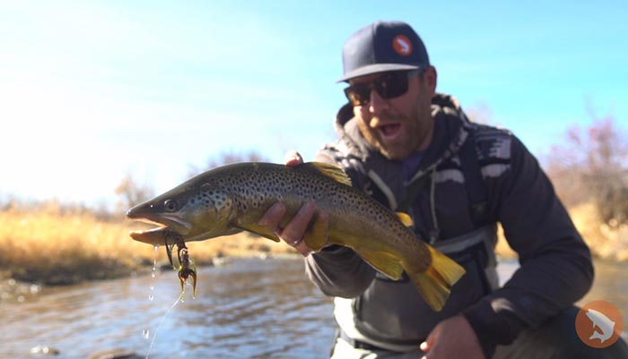 Fly-Fishing Blog   Fly-Fishing News, Tips & Articles   Orvis