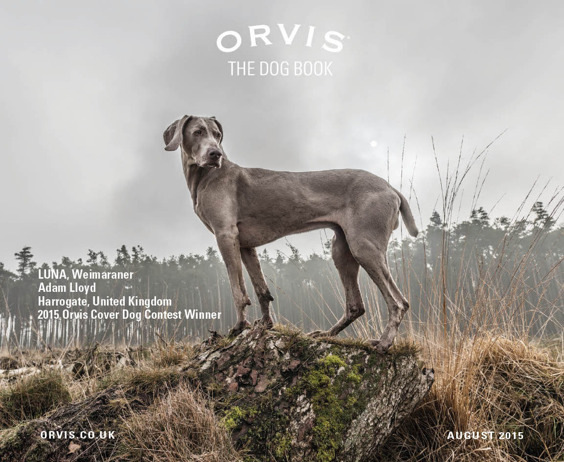 Announcing Our Latest Orvis Cover Dog Contest Winners
