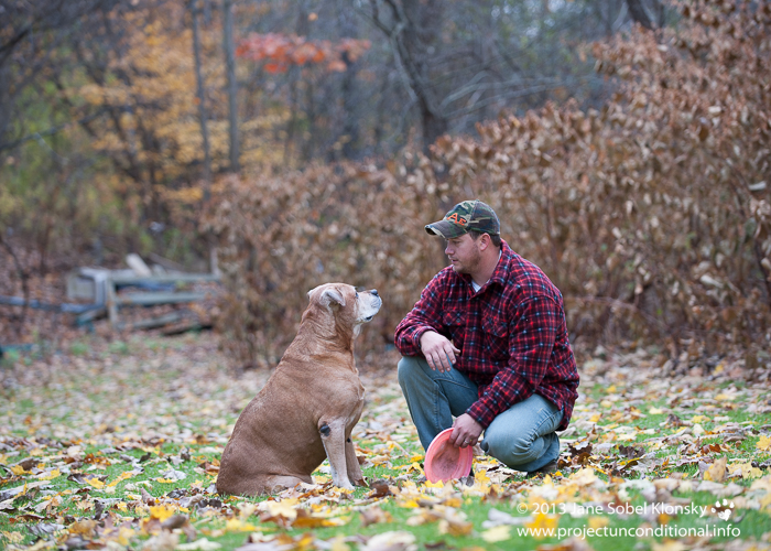 Hunting Dogs For Sale In Vermont