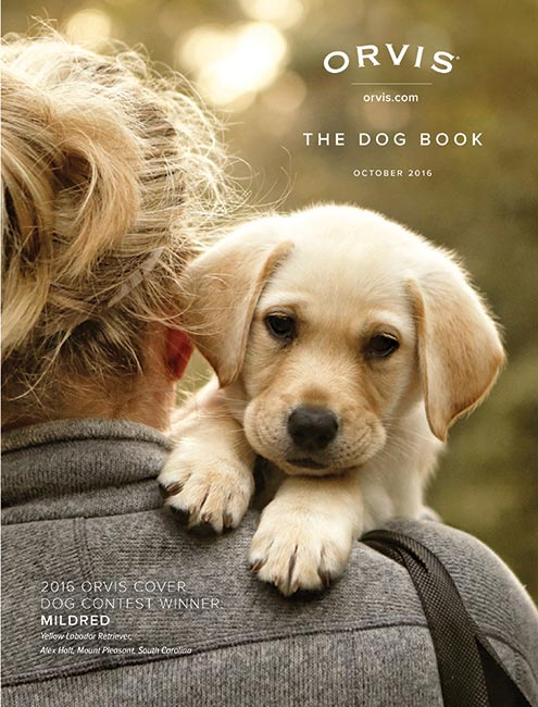 Cover Dog Archives - Orvis News
