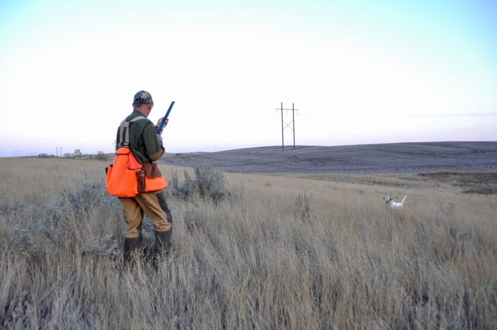 hunting laws essay