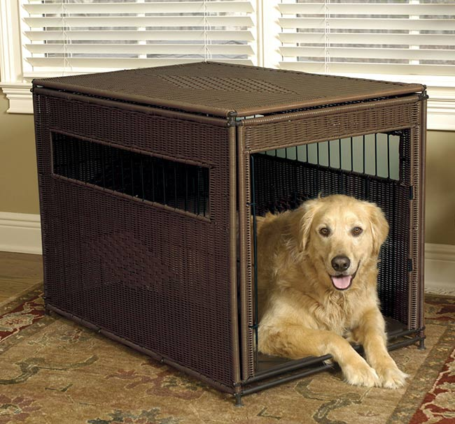 What Size Crate Should I Get For My Dog Orvis News