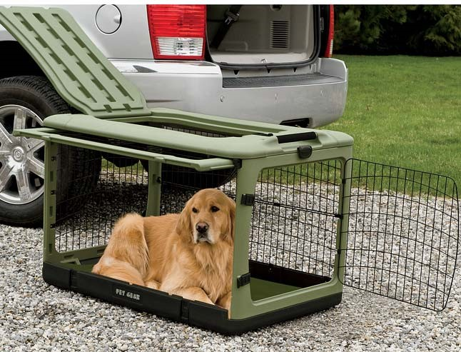 Car Travel Without Dog Crates What Could Possibly Go Wrong