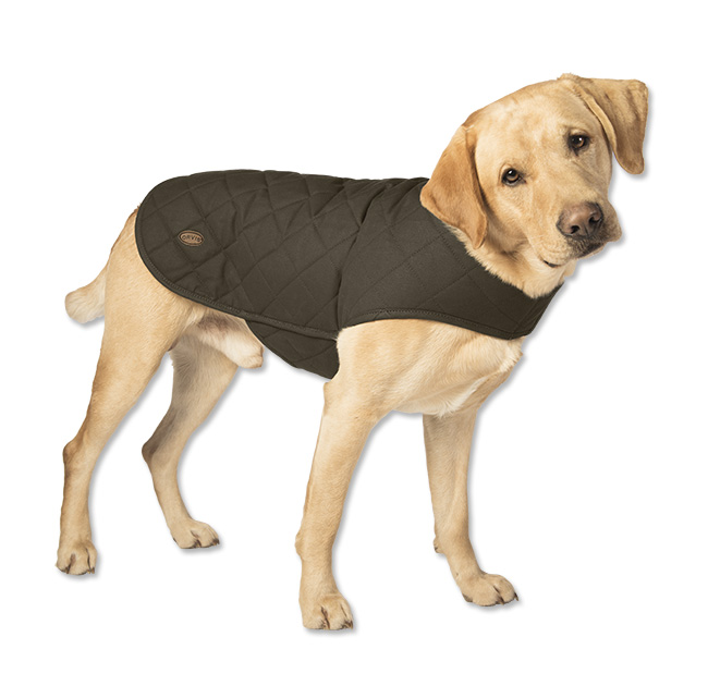 Enter to win a Deep Dish Dog Bed & Dog Jacket - Orvis News : quilted dog coats for winter - Adamdwight.com
