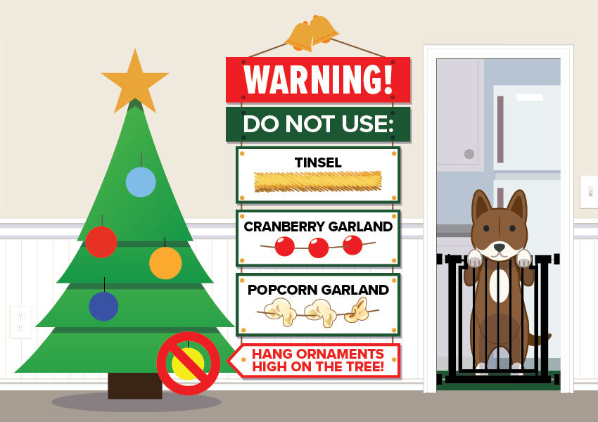 Pet Holiday Safety 1