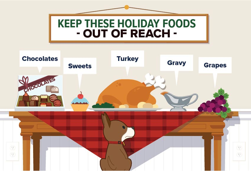 Pet Holiday Safety 2