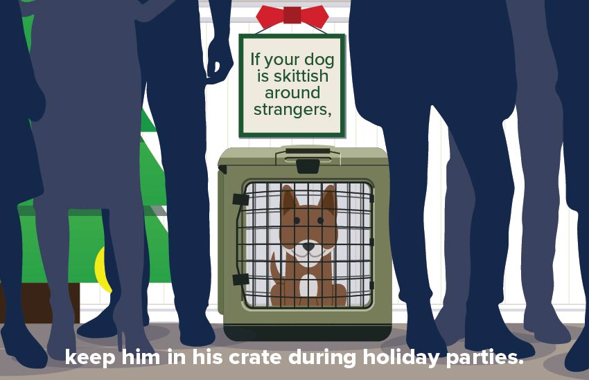 pet_holiday_safety_3
