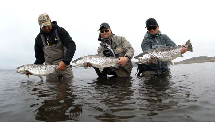Fly fishing for arctic char archives orvis news for International fly fishing film festival
