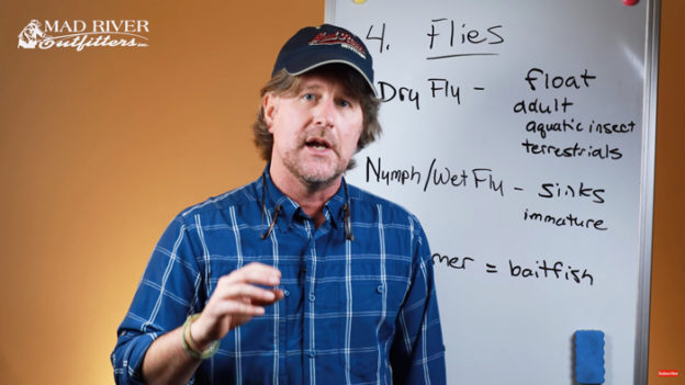 Video Pro Tips: Understanding Different Kinds of Flies