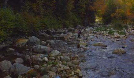 11.30--Fall Small-Stream Magic