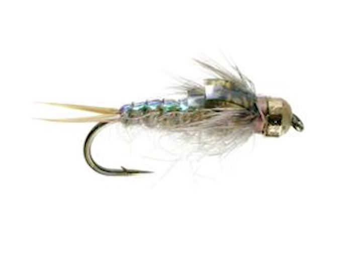 Top 5 Dry Flies for October 2018–Dropper Edition!