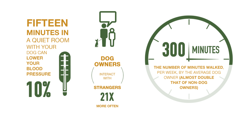 The Real Benefits of Having a Dog - Orvis News