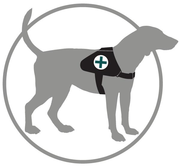 Fake Service Dog Laws