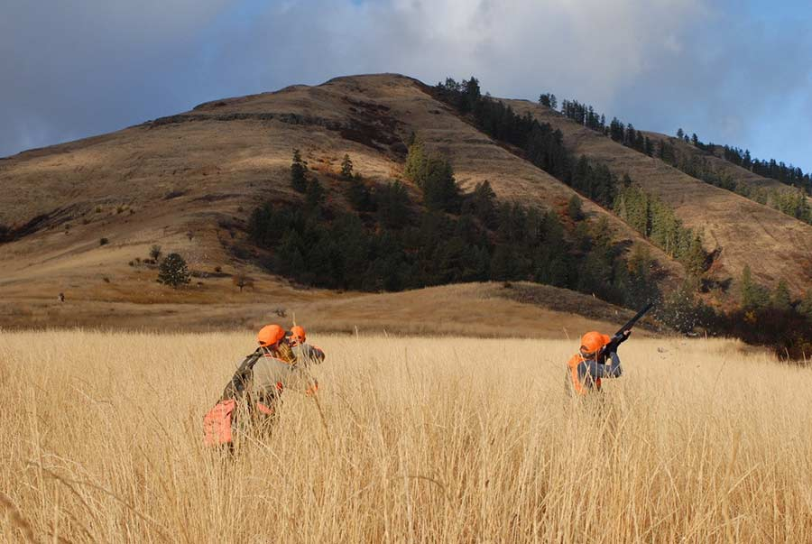 Check Out the Orvis-Endorsed Wingshooting Guide School at Flying B Ranch