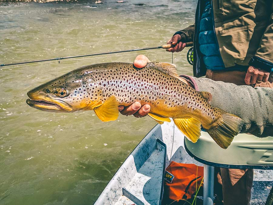 Photos and Story: The Wyoming Two Fly Tournament