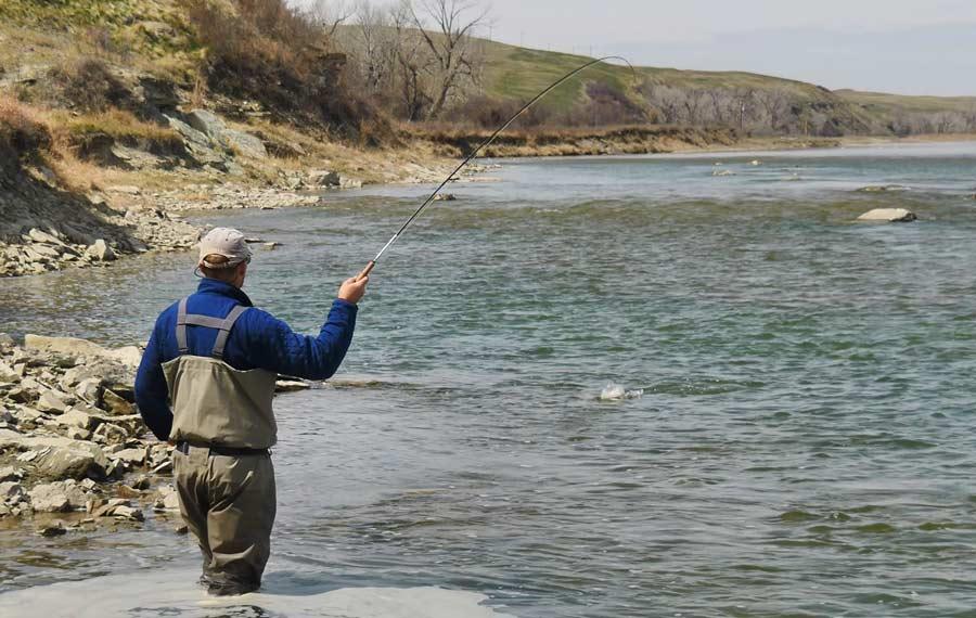 Master Class Monday: How to  Fish a Rock Garden