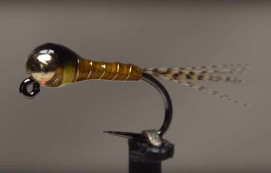 Video: How to Tie a Sulfur Perdigon