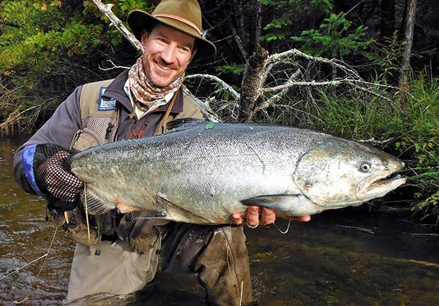 Fish Facts Chinook Salmon Oncorhynchus Tshawytscha Orvis News