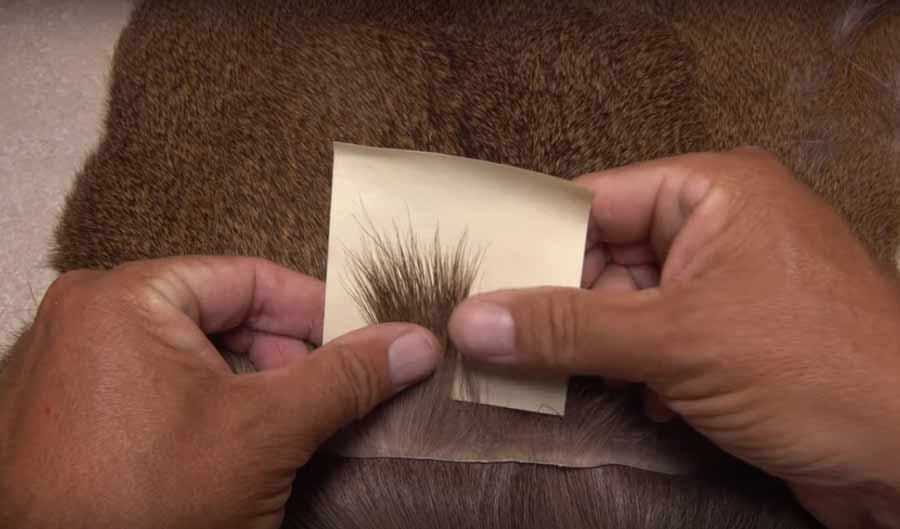 Video: How to Choose Deer Hair for Comparaduns III