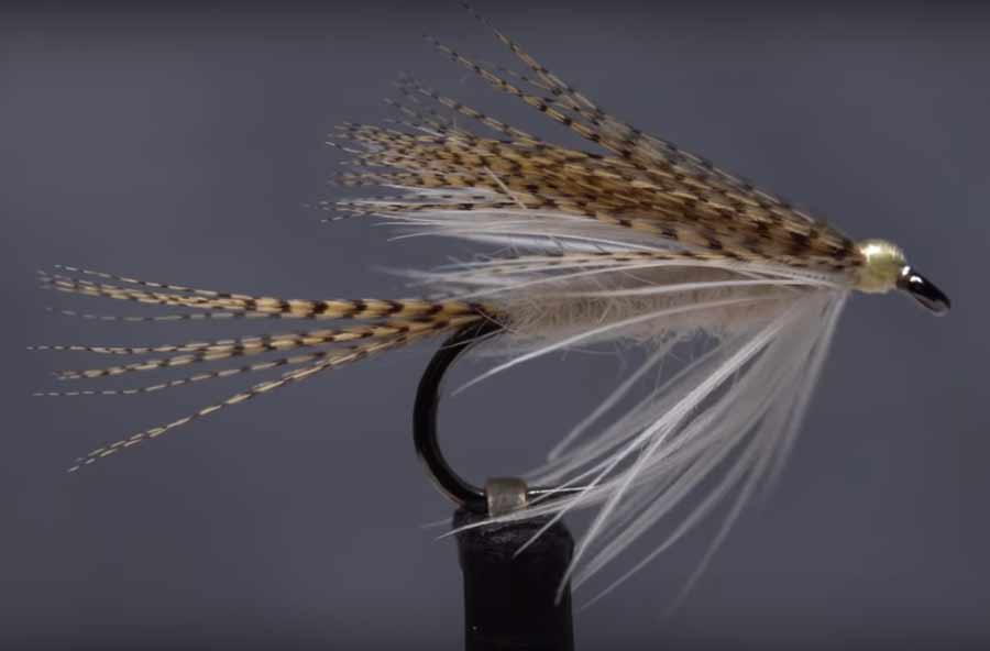 Video: How to Tie a Light Cahill Wet Fly