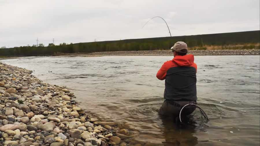 Master Class Monday: How to Fish Dry Flies Over Gravel Runs