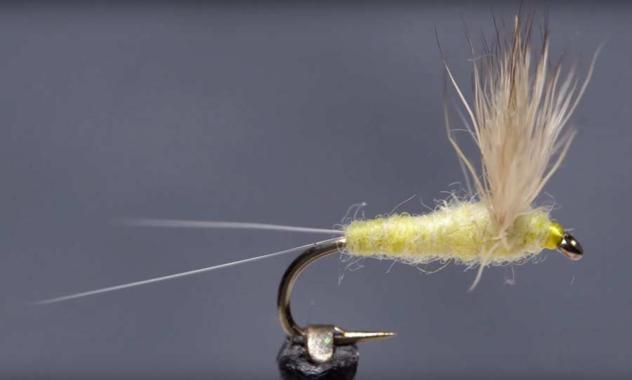 Video: How to Tie a Sulphur Comparadun