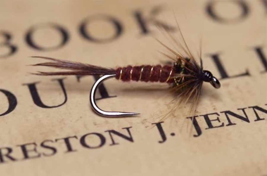 Video: How to Tie an Isonychia Nymph