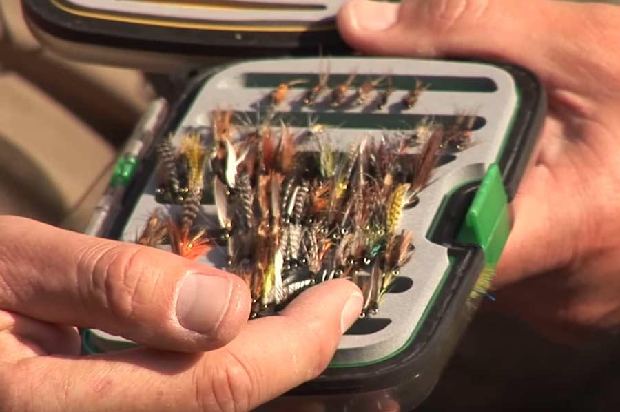 Video Pro Tips: How to Fish Wet Flies