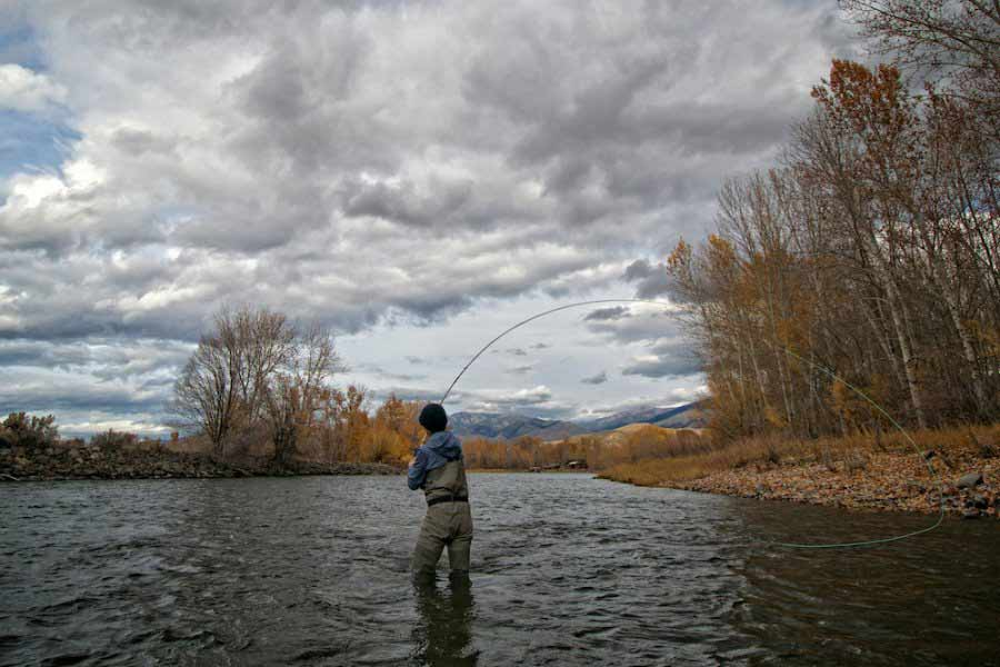 Trout Spey: How to Get Started Swinging for Trout