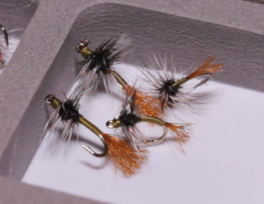 Video: How to Tie the Griffith's Gnat Emerger