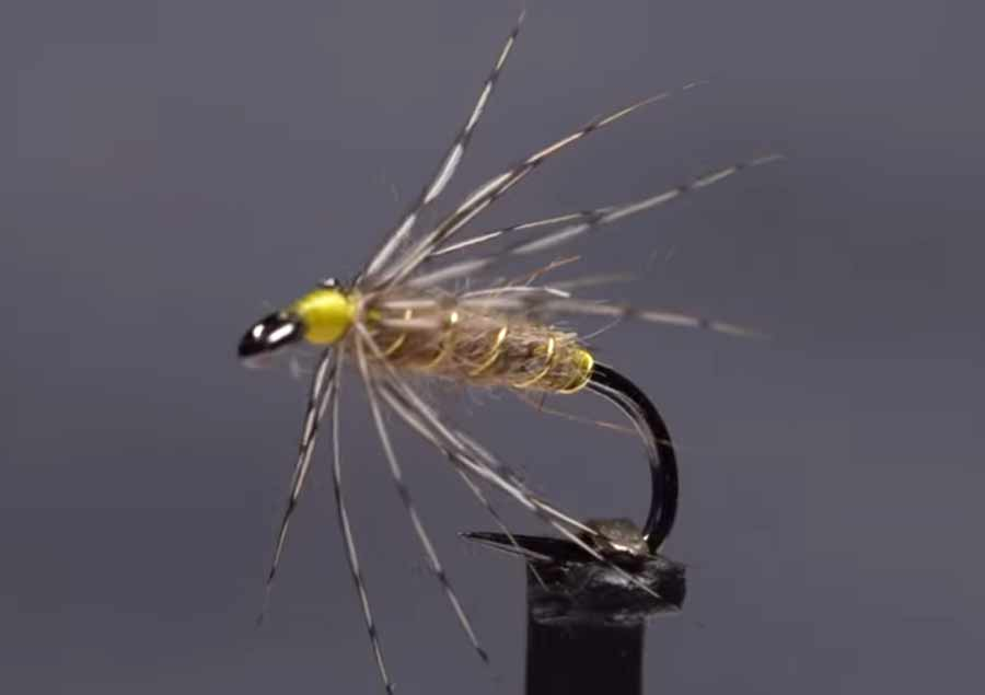 Video: How to Tie the Leisenring Spider
