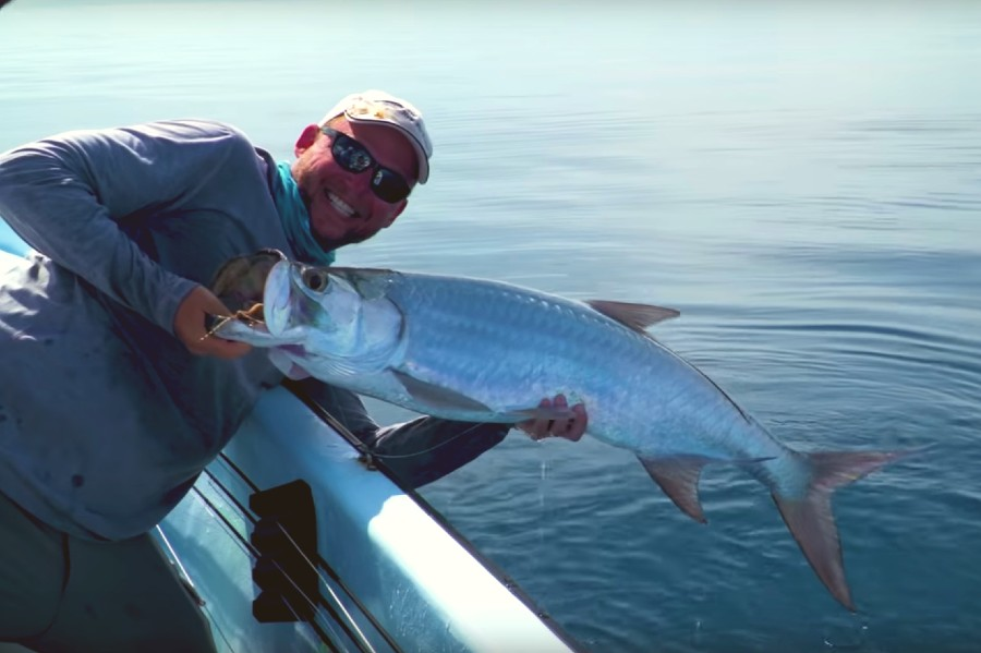 Video: Bonefish, Permit, and Tarpon in Belize with Tom Rosenbauer