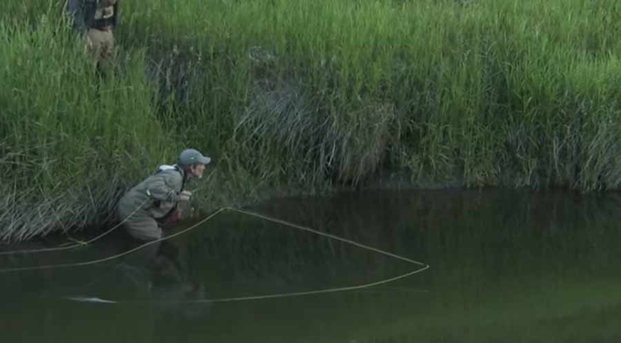 Video: The Basics of Fly Fishing, with Tom Rosenbauer