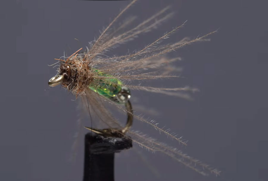 Video: How to Tie a Shiney Hiney Caddis Pupa