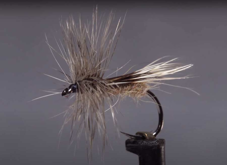 Video: How to Tie the Chuck Caddis